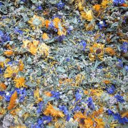 Mélange en vrac des plantes composant la tisane Vif matin